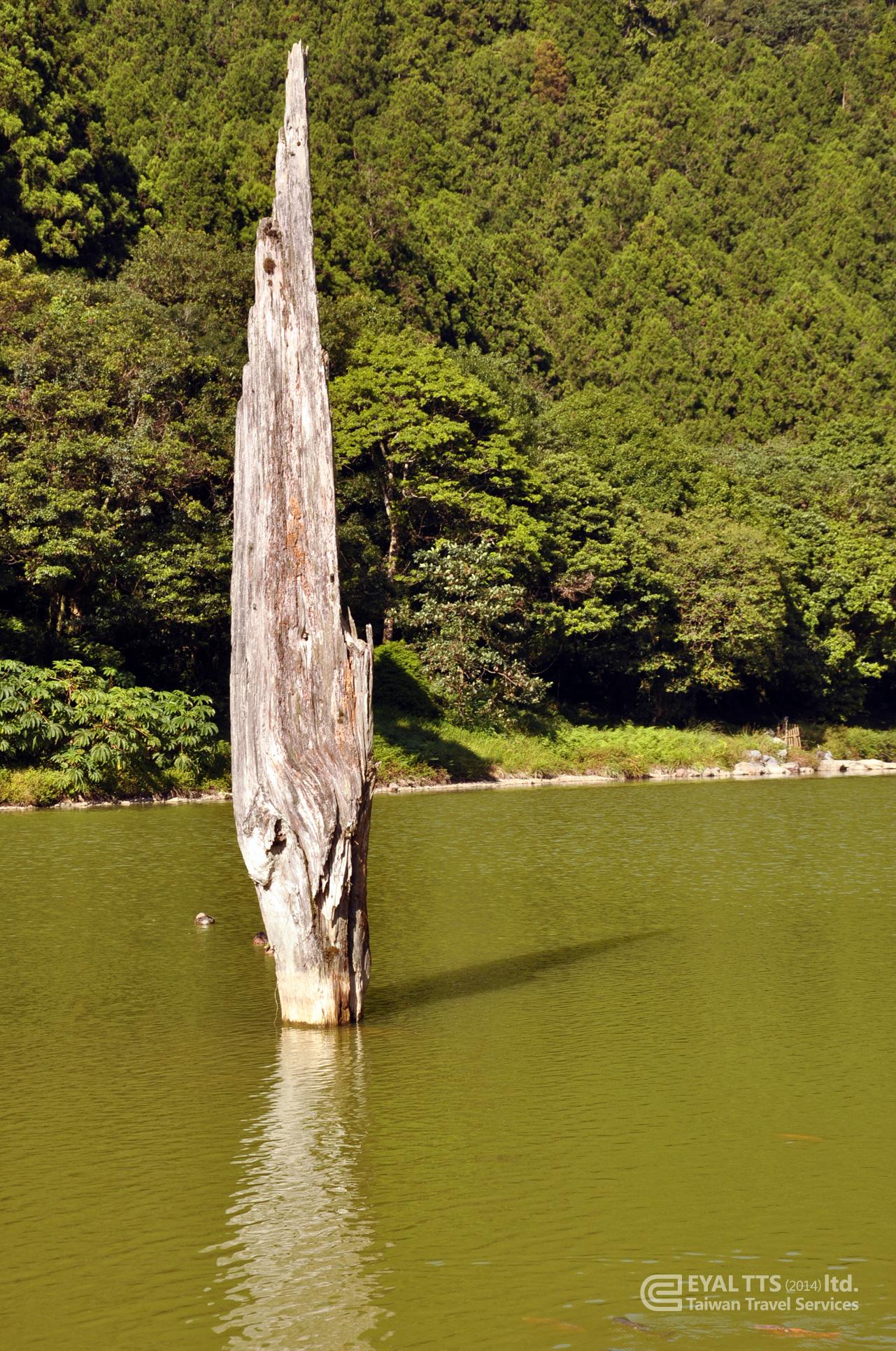 Taiwan pic 23
