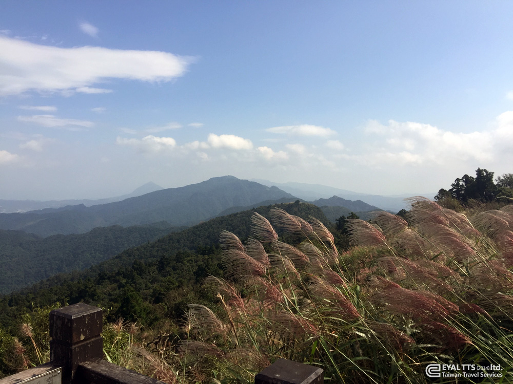 Taiwan pic 142