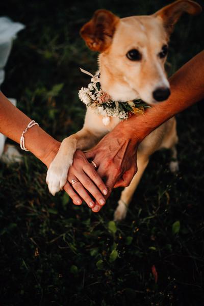 Hochzeit_Chrissi & Timo_1075.jpg