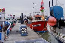 Page Pros' 5 Pêche en Mer.JPG