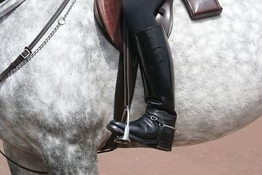 botte, boots, chaps et mini-chaps d'équitation cavalier