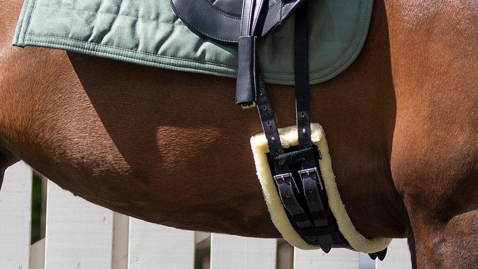 Sangle de dressage équitation Ontario