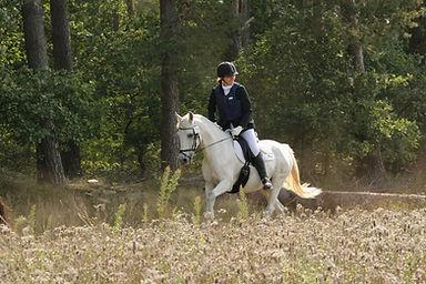 Casque et gilet d'equitation. Protection du cavalier à cheval