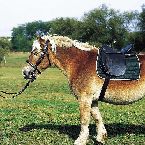 Selle de cheval Trait équitation