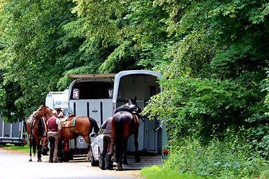 Accessoires et equipement pour la securité du cheval lors des transports et voyage en van et camion. Protection et longe de sécurité.
