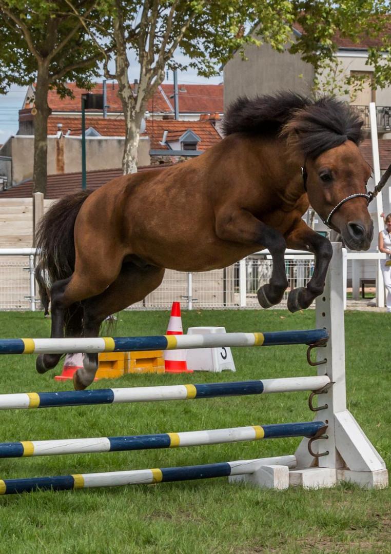 Hughito jump1.jpg