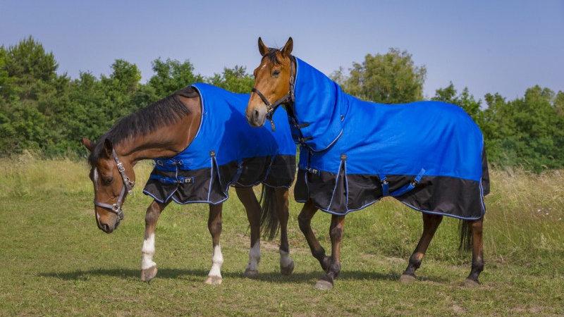 """Couverture pour cheval  EQUITHÈME TYREX 1200D """"Aisance"""" Combo"""