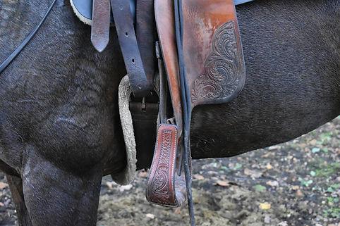 accessoire pour equitation western , etrier, sangle