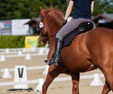 Pantalons d'équitation pour monter à cheval. Vetement du cavalier.