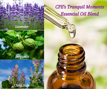 CFE's Eucalyptus Mint Essential Oil Blen