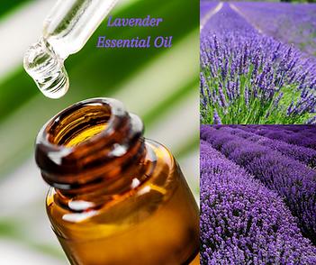 Lavender (1).png