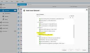 SAP BI running embedded into SalesForce