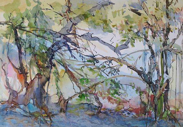 Under The Mangroves 22x30_edited.jpg