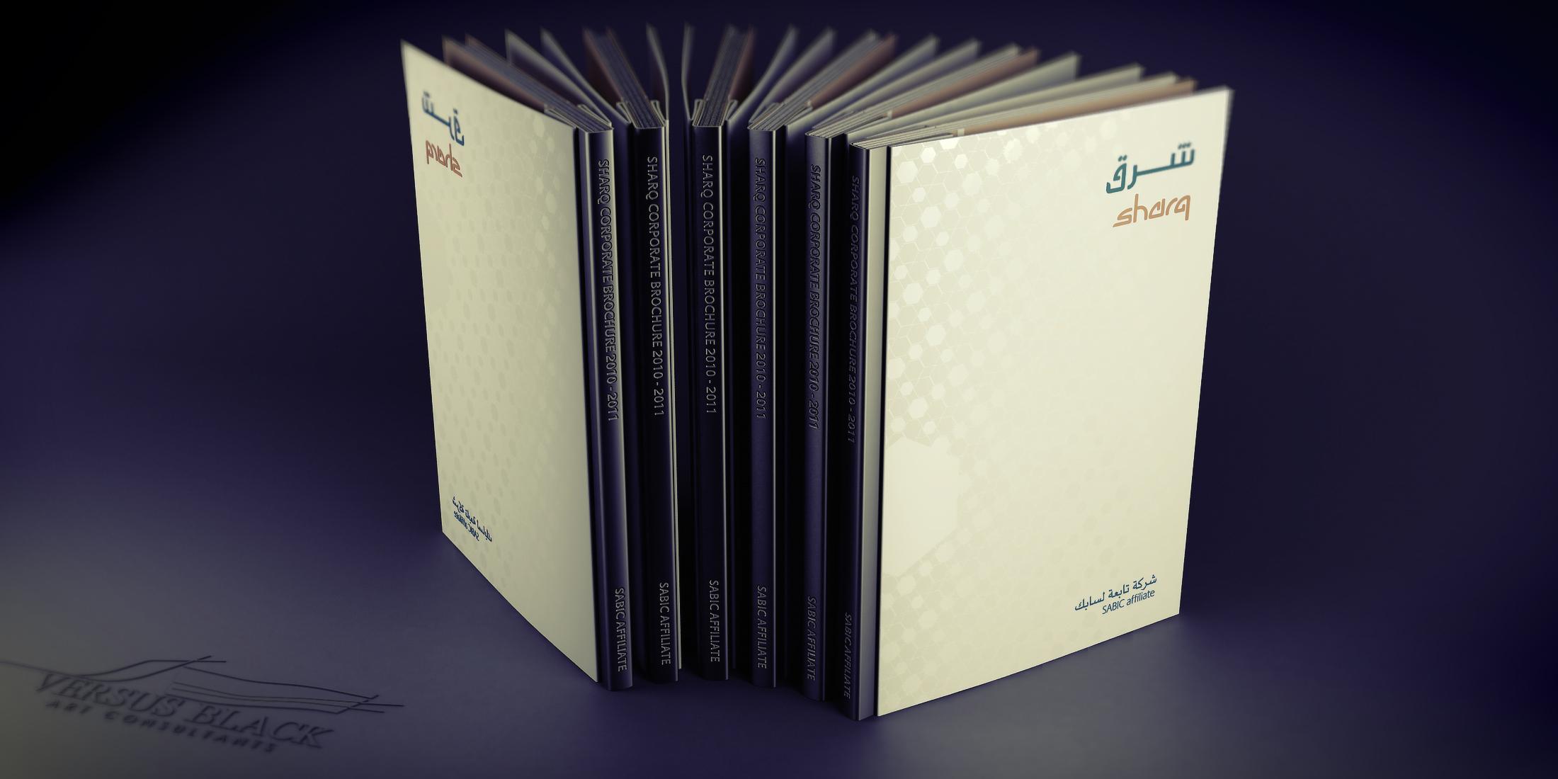 Sabic Brochures 2010_Comp03 2.2KWeb