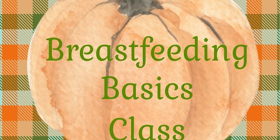 Breastfeeding Basics Class - Morning