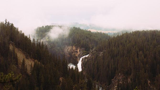 Principle of the week: Peaks and Valleys