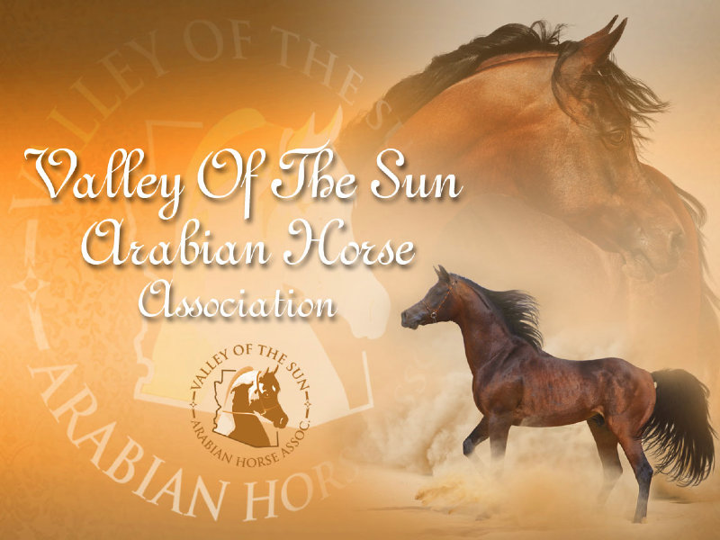 Valley of the Sun Arabian Horse Association