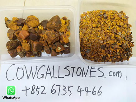 Ox gallstones, pedra de fel bovina, cálculos biliares bovinos, Calculs biliaires bovins, бычьи желчные камни