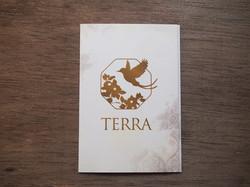 TERRA フライヤー