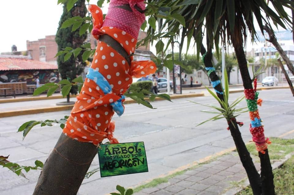 manifestación contra tala de arboles en aguascalientes