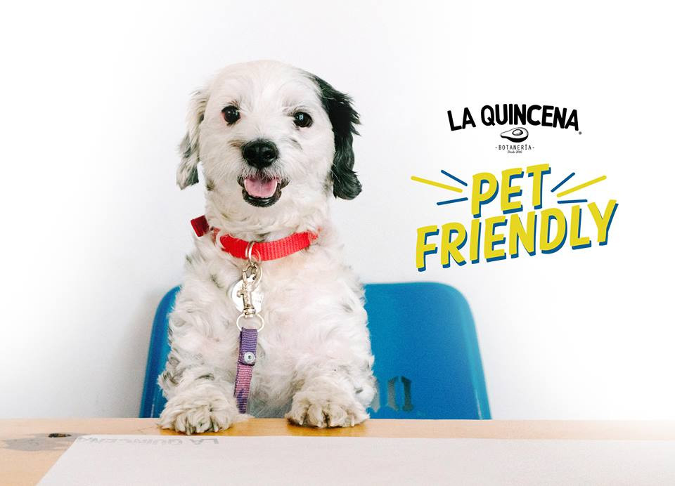 La Quincena es un restauran pet-friendly en el centro de Aguascalientes