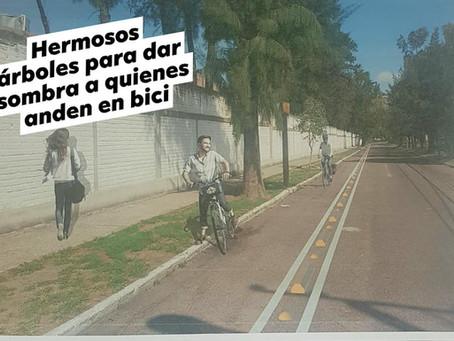 ¿Qué está pasando con la ciclovía de Jardines de la cruz?