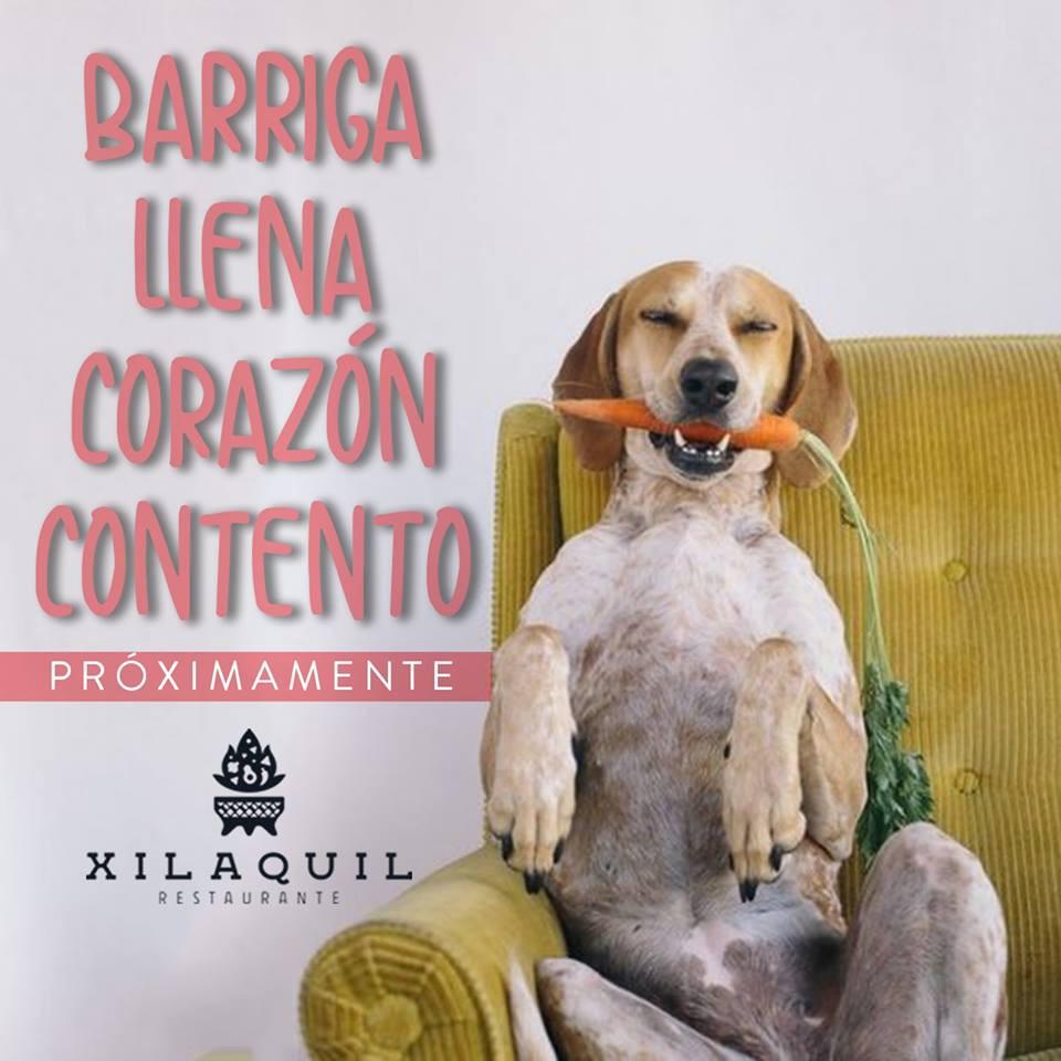 Xilaquil, restaurante para mascotas en aguascalientes