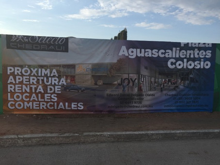 Plaza Aguascalientes Colosio y Chedraui Selecto