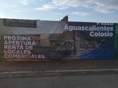 Plaza Aguascalientes Colosio y Chedraui Selecto