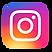 instagram_bunt.png
