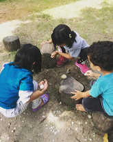 Exploring life under logs.__www.outdoors