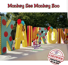 Curious George Party Decorations Curious George Letters
