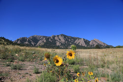 Colorado Fall 2014-3096