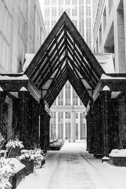 Detroit winter 2018-5779