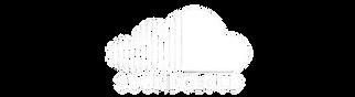 RSounloud logo 1.png