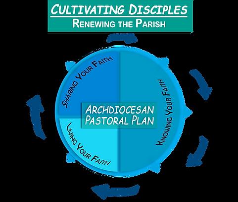 Evangelization.Graph.Circle 6.png