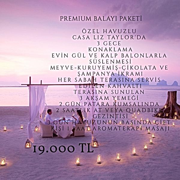 PREMIUM BALAYI PAKETİ.png