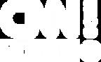 cnnturk logo