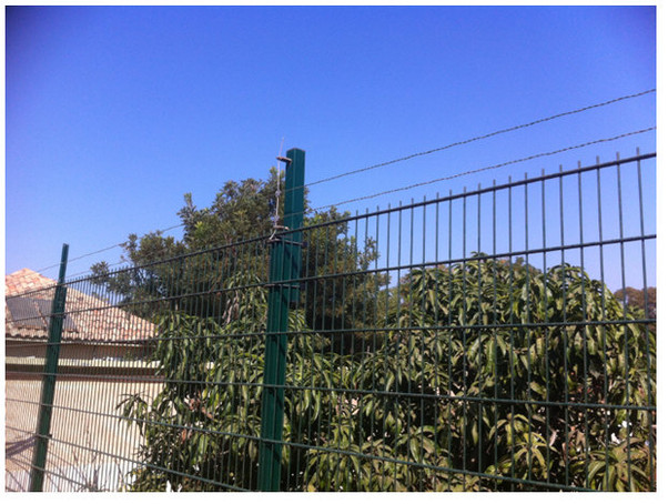 D-Fence | D-Welded Mesh | Government Facility
