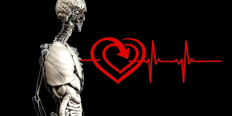 Training: cardiac coherence workshop