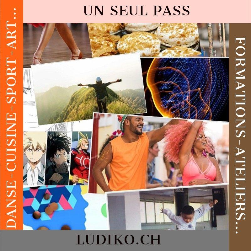 Ludiko Pass_2