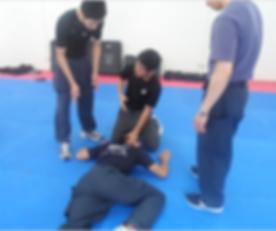 Self defence tactics 2017-12-06 at 11.53.15 PM.png