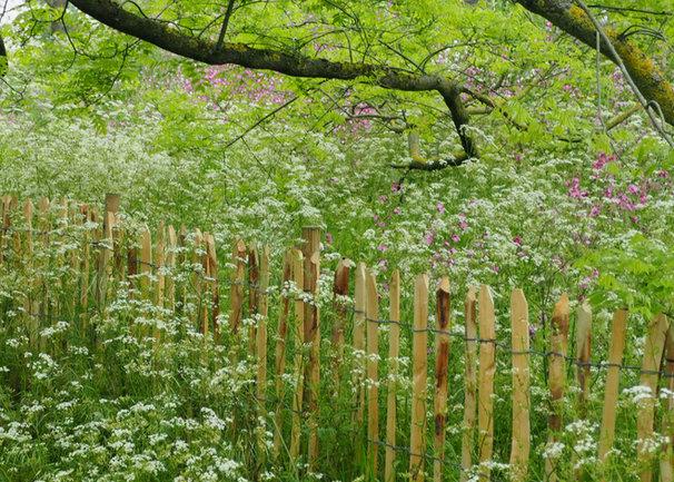 Staketenzaun, naturnahe Pflanzung, Gartengestalung, Gartenarchitektur