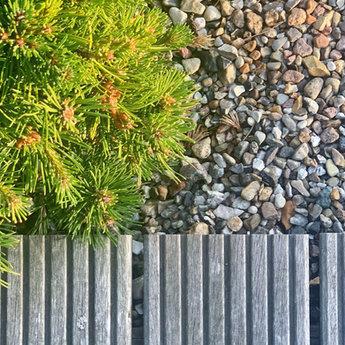 Gartendesign: Kies, Kiefer und Holzterrasse