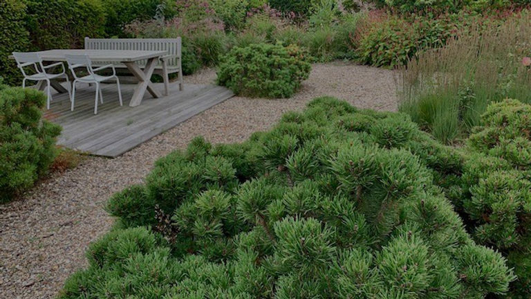 Designprozess Umsetzung Garengestaltung Kiefer Holzterrasse Sylt