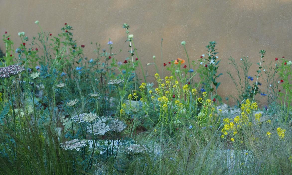 feine Stauden in der Pflanzplanung, Gartengestaltung, Gartendesign
