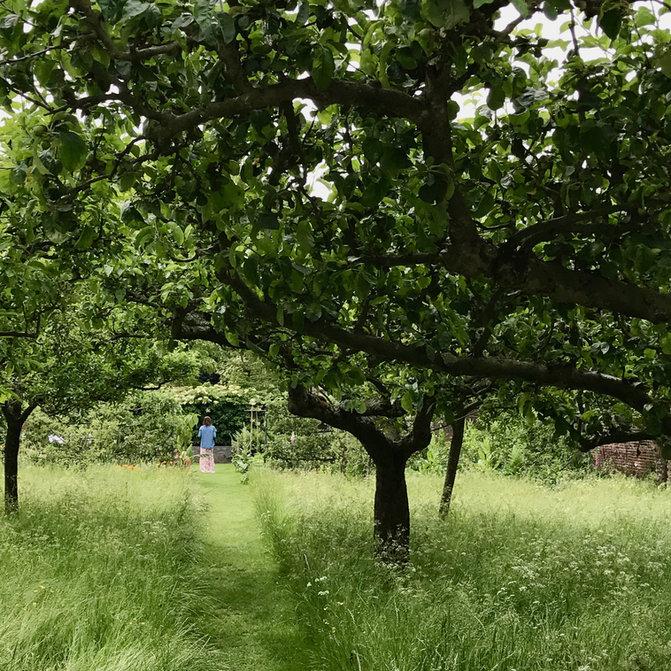 romantischer gemähter Weg Obstwiese, Garendesign, Gartenplanung, Gartenarchitektur, Gartenideen