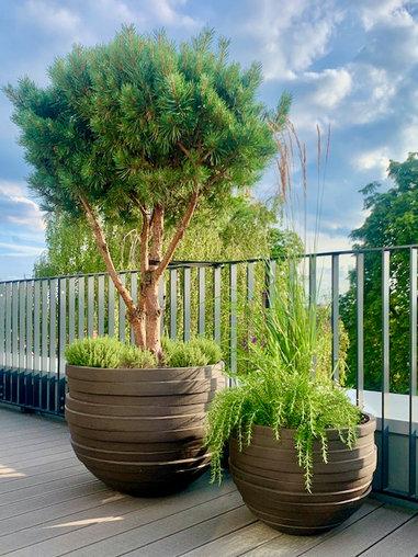 Terrassengestaltung mit Tontöpfen von Atelier Vierkant. Gartenarchitektur:Kiefer, Gräser und mediterrande Kräuter