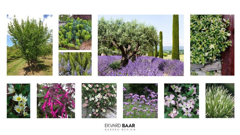 mediterranes Gartendesign, Gartenplanung.jpg