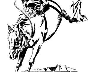 Bucking The Saddle